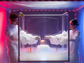 Experimenting on raw meat in sterile chamber — Stock Photo