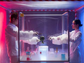 Experimenting on vegetables in sterile chamber — Foto Stock