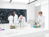 Team of scientists in a laboratory — Stock Photo