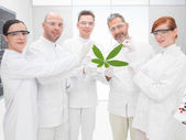 Scientists holding a genetically modified leaf — Stock Photo