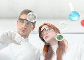 Scientists observing petri dish — Stock Photo