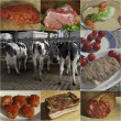 Processing of the meat — Stockfoto