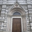 Door of SienCathedral — Stockfoto #38127811