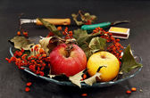 Apples and dried bunches of rowan. — Stock Photo