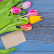 Stock Photo: Bouquet of colorful tulips