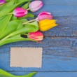 Bouquet of colorful tulips — Stock Photo #22524301