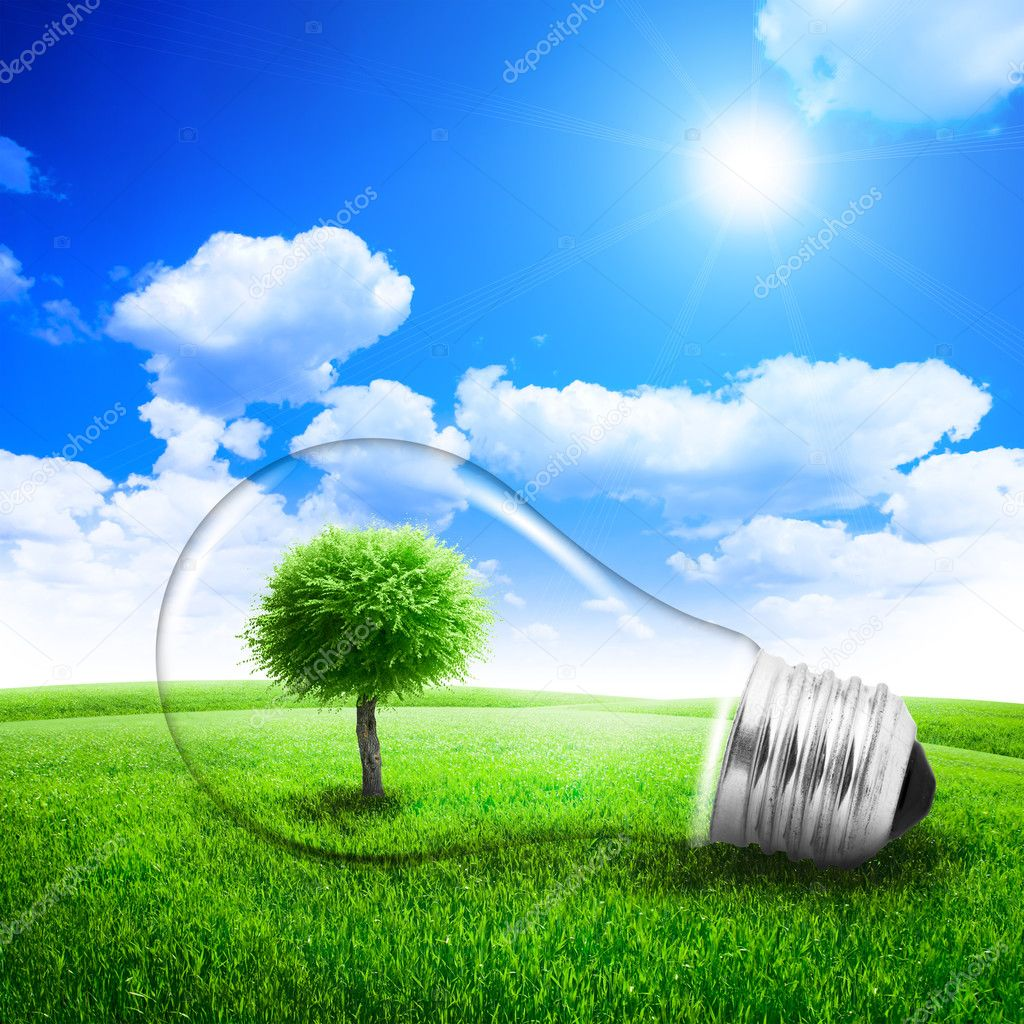 Lightbulb with a tree growing inside in field. Environment or energy concept background — Stock Photo #13509905