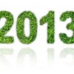 2013 — Stock Photo #14075982