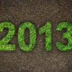 2013 — Stock Photo #14076047