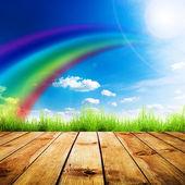Zelené trávy na dřevěné prkno přes modré oblohy. — Stock fotografie