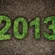 2013 New Year sign of green grass over dark ground. Eco concept — Stock fotografie