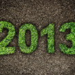 2013 New Year sign of green grass over dark ground. Eco concept — Stock Photo
