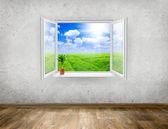Window — ストック写真