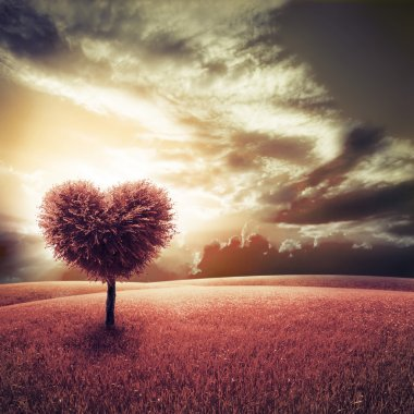 Abstract field with heart shape tree under blue sky