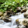 Waterfall — Stock Photo #35404427