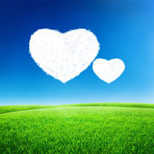 Green field under blue sky with heart shape on it. Love concept — Stock Photo