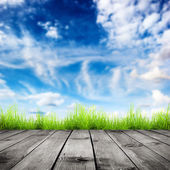 Fresh spring green grass with blue bokeh and sunlight and wood floor — Stock Photo