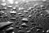 Gotas de água — Fotografia Stock