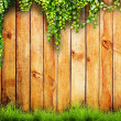 Green grass and leaf plant over wood fence background — Stock Photo