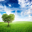 Green field with heart shape tree — Stock Photo #44790395