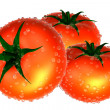 Three Red tomato covered with waterdrops. Foods and Dishes Serie — Stock Photo #30354071