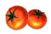 Zwei rote tomaten bedeckt mit regentropfen. lebensmittel und speisen-serie. — Stockfoto