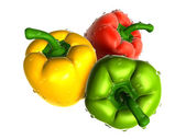 Brown sweet pepper with water droplets from variety. Foods and D — Stock Photo