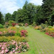 Dortmund park — Stock Photo #29798225