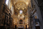 Santa Maria dell Anima, Rome — Stock Photo