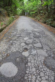 Damaged road — Stock Photo