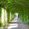 Schoenbrunn gardens — Stock Photo