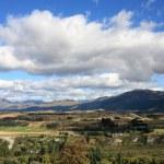 New Zealand landscape — Stock Photo