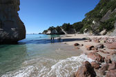 Cathedral cove, new zealand — Stockfoto