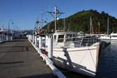 Picton harbor — Stock Photo