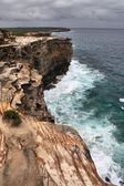 Royal National Park, Australia — Stock Photo