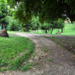 Park in Rome, Italy — Stock Photo #30046793
