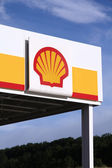 Shell — Stock Photo