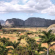 Vinales, Cuba — Stock Photo #30093333