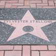 Sylvester Stallone star — Stock Photo
