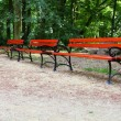 Benches in Park — Stock Photo #30114315