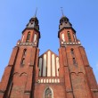 Opole cathedral — Stock Photo