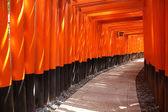 Fushimi Inari, Japan — Stock Photo