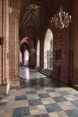 Cattedrale di poznan — Foto Stock