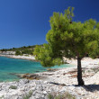Adriatic Sea beach — Stock Photo