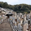 Kyoto - Japanese cemetery — Stock Photo #30168827