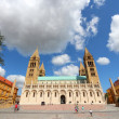 Pecs cathedral — Stockfoto