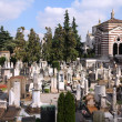 Milan cemetery — Stock Photo