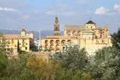 Cordoba, Spain — Stock Photo