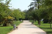 Turia Gardens in Valencia, Spain — Stock Photo