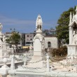 Havana cemetery — Stock Photo